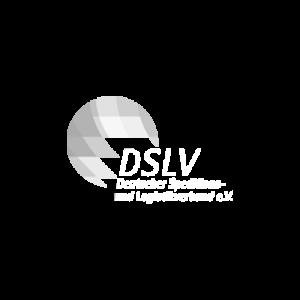 DSLV_Logo_Negativ
